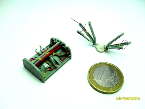 SDC11891